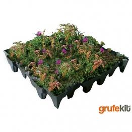 Sedum And Wildflower Grufekit M2