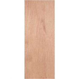 Internal Flush Plywood Paint Grade Door