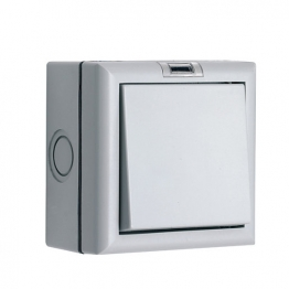 Smj Outdoor Ip66 1gang 2way Switch 10a