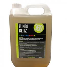 Paint 360 Fungicidal Wash 5l