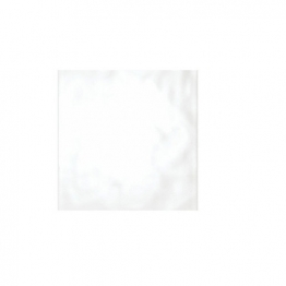 Reflections White Gloss Field 248 X 398mm Can41806